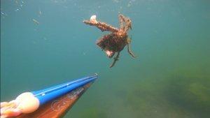 Deniz altındaki tahribat görüntülendi!